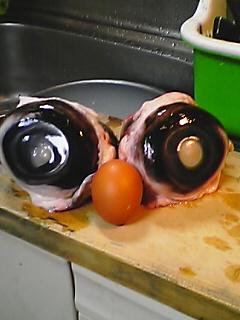 マグロの目