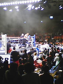 シュートボクシング