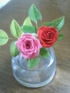 バラが咲いたぁ♪