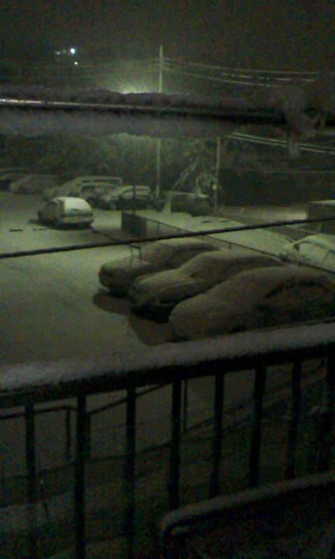 久しぶりの大雪